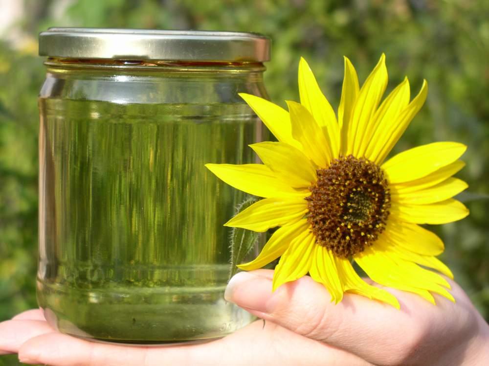 Biodiesel Methyl Ester