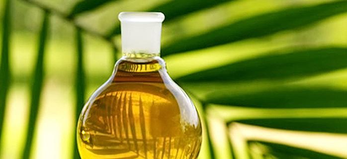 Neutralised, Bleached & Deodorised (NBD) Palm Olein