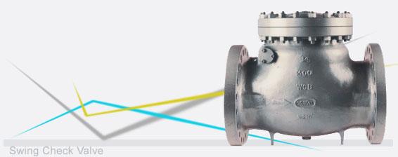 Buy Oswal check valves