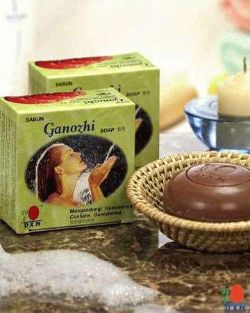 Buy Ganozhi™ Soap