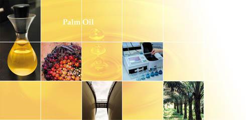 Buy RBD Palm Oil