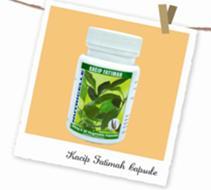 Buy Ganoderma Extract Capsule