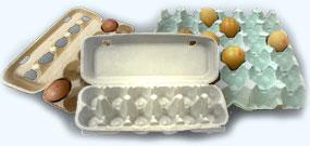 Buy Paper Egg Tray