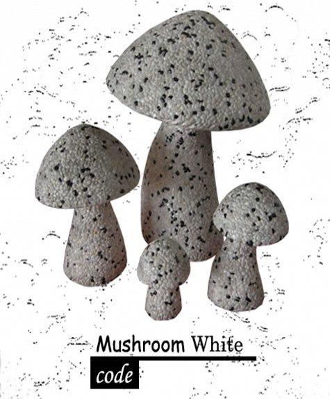 Buy Mushroom Set