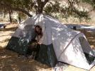 Buy Camping Tent