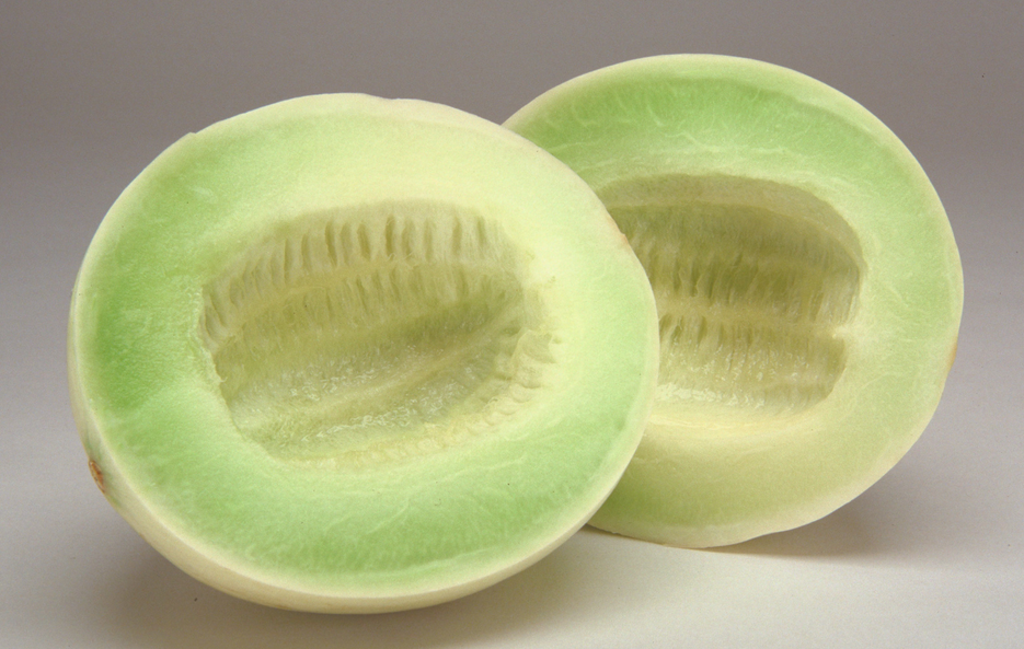 Fruits Honey Dew (Cucumis melo:Inodorus )