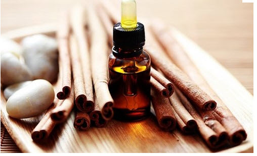 Buy Essential Oil (Cinnamon Oil)