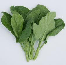 Buy Vegetables Kailan