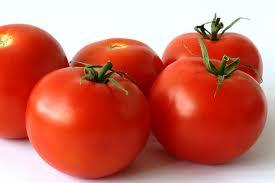 Buy Tomatoes Tomato