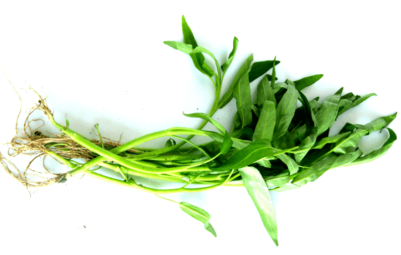 Buy Organic vegetables kang kung
