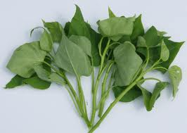Buy Organic vegetables Sweet Potato Leaves