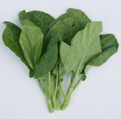 Buy Organic vegetables Kai Lan