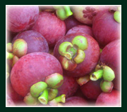 Buy Fresh fruits mangosteen