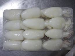 Buy Frozen seafood Baby Cuttlefish 60/80
