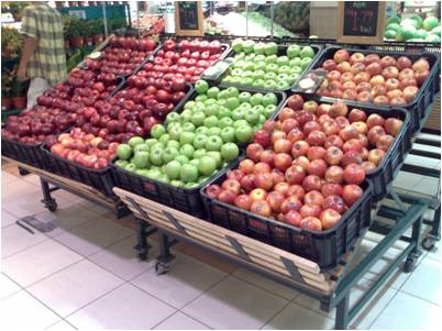 Buy Shelves for fruit and vegetables Euro Table with Divider (JSC)