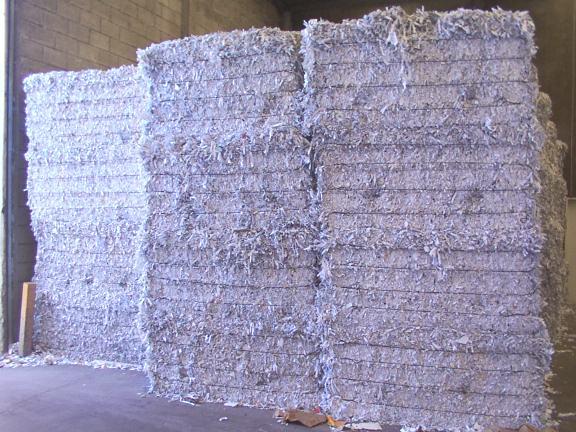 Buy Waste Paper