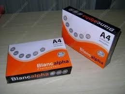 Buy Blanc Alph
