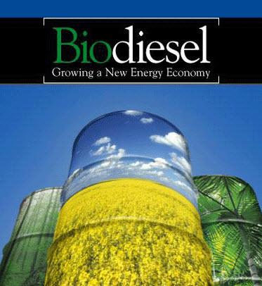 Biodiesel B100