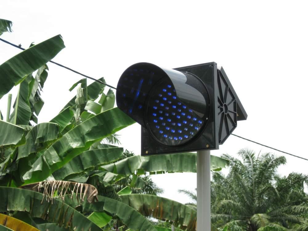 Buy Solar Flashing Light