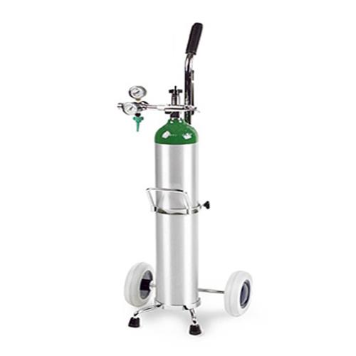 Buy KEHS - Oxygen Cylinder (E Sizes), OC111