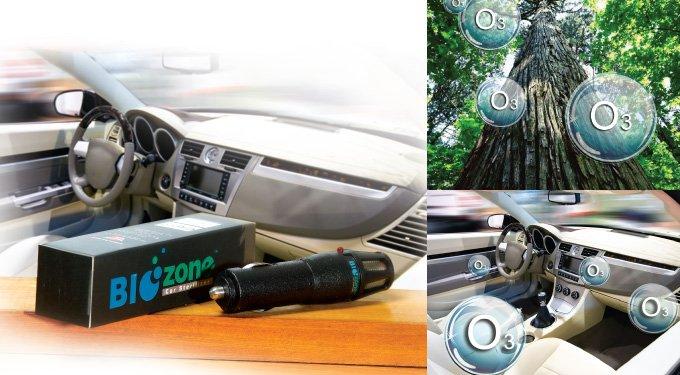 Buy BIOZONE Car Sterilizer