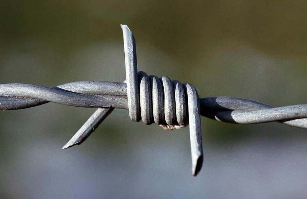 Buy Barbed wire popular in Malaysia