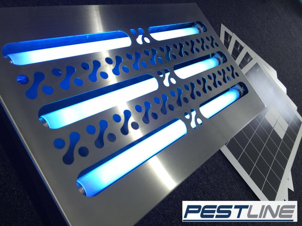 Buy Insect Light Trap