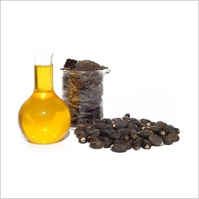 Buy Jatropha Oil