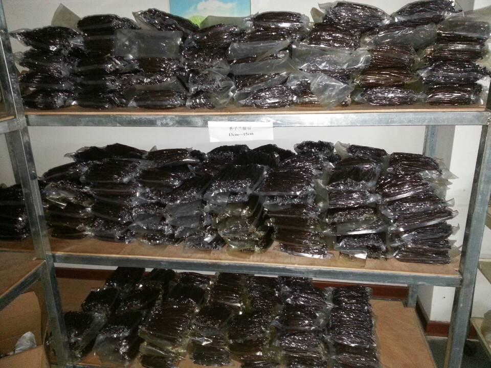 Buy Premium Madagascar Vanilla Beans / Organic Vanilla Beans