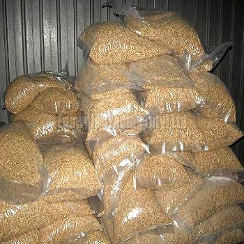 Buy Wholesale Yellow Corn & White Corn / Maize for Human & Animal Feed Grade