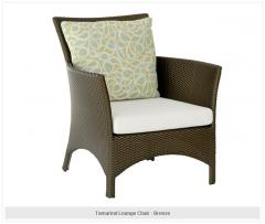 Tamarind Lounge Chair - bronze