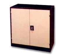 Swinging Door Cabinet