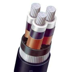 Micc Cable