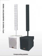 City1 Compounding Speaker