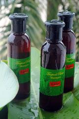 Shampoo (Tropical Rainl, Natural)