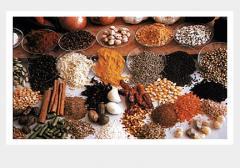 Spices   Enrico
