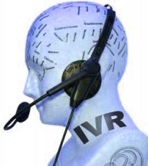 Interactive Voice Response (IVR)