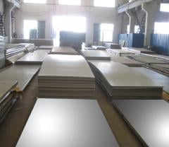 Hot Rolled / Cold Rolled Plates and Coils