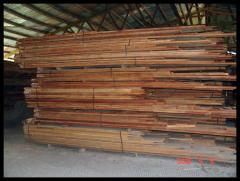 Kembang Semangkok Timber