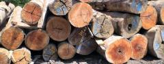Melapi Round Log