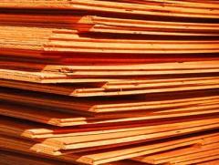 Lamin Board Plywood (LB)