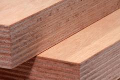 Tropical Hardwood Veneer