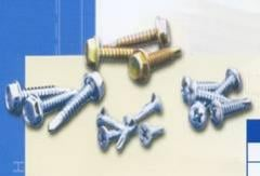 Self – Tapping Screws