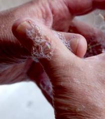 Hygiene/Anti Bacteria Hand Wash