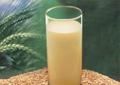 Malt Base Beverage