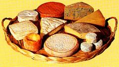 Australia Cheese Products Lactos Brand
