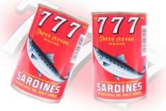 Sardine in Natural Oil