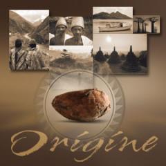 Savour Callebaut's Origine chocolate