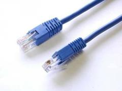 Cat5e UTP Patch Cord (PC-Hub) (Group)