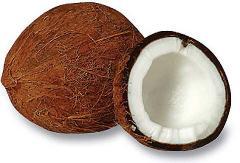 Santanmas Coconut Products